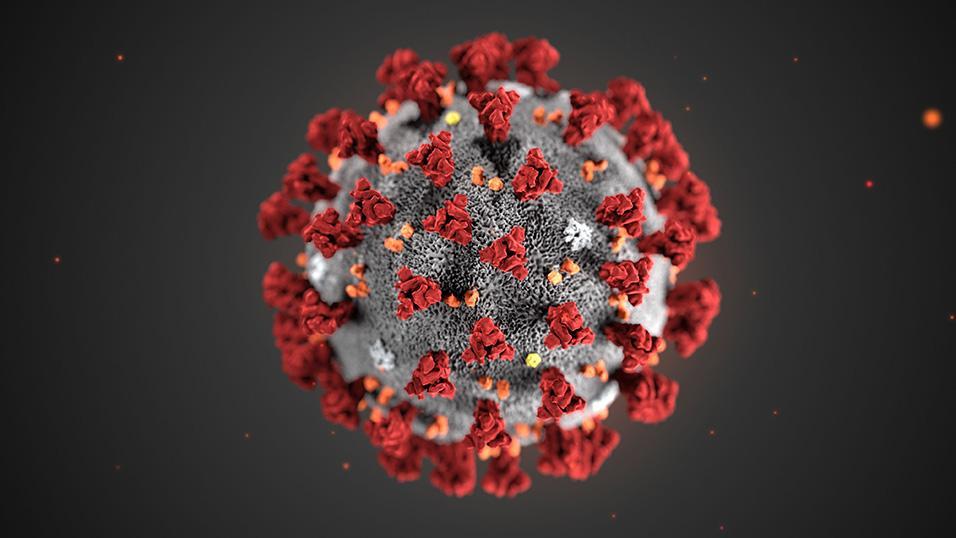 coronavirus - foto del virus in 3d